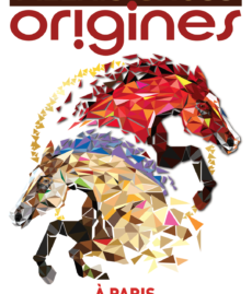 Alexis Gruss Origines